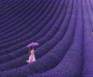 девушка, фиолетовый, and цветы image