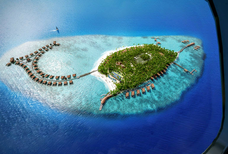 beach, Island, and Maldives image