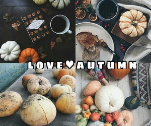 autumn, welcome, and love image