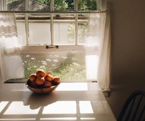 photography, peach, and aesthetic image