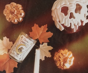 aesthetic, apple, and autumn image