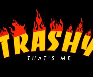 flames, trashy, and thrasher image