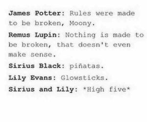 broken, funny, and harry potter image