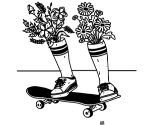 flowers, sunflowers, and legs image