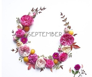 flowers and September image