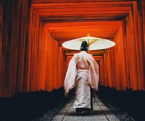 asian, geisha, and japan image