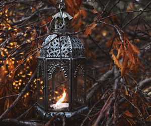 autumn, candle, and leaves image
