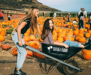 fall, pumpkin, and best friends image