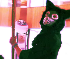 galantis and seafox image