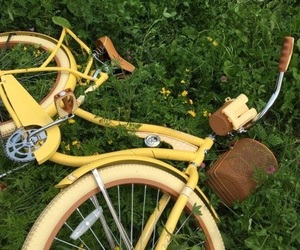 yellow, aesthetic, and bike image