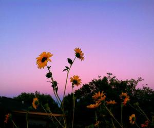 87+ Gambar Pemandangan Tumblr HD