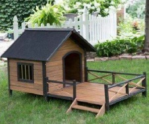 dog, house, and doghouse image