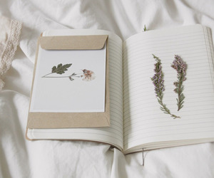 journal, lovely, and pale image