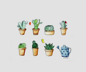 wallpaper, cactus, and drawing image