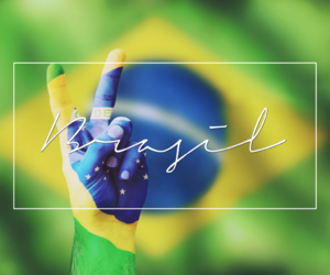 article, articles, and brasil image