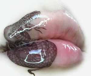 lips, glossy, and snake image