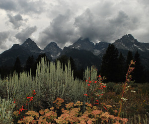 mountains, nature, and art image