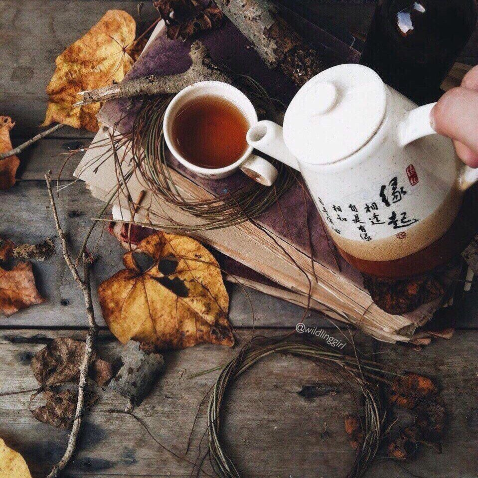 autumn, tea, and fall image