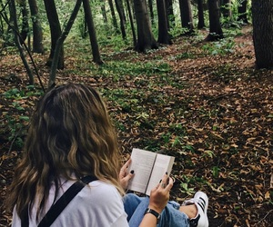 adventures, book, and forest image