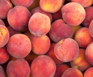 wallpaper, food, and fruit image
