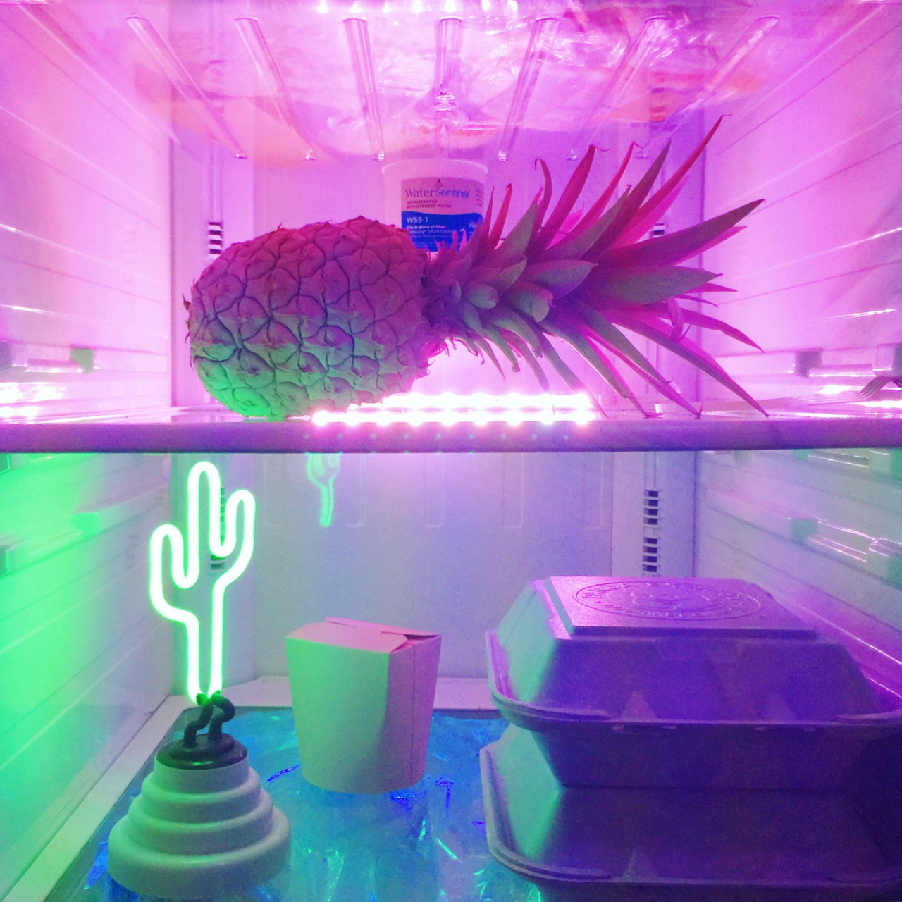 aesthetic, food, and neon image