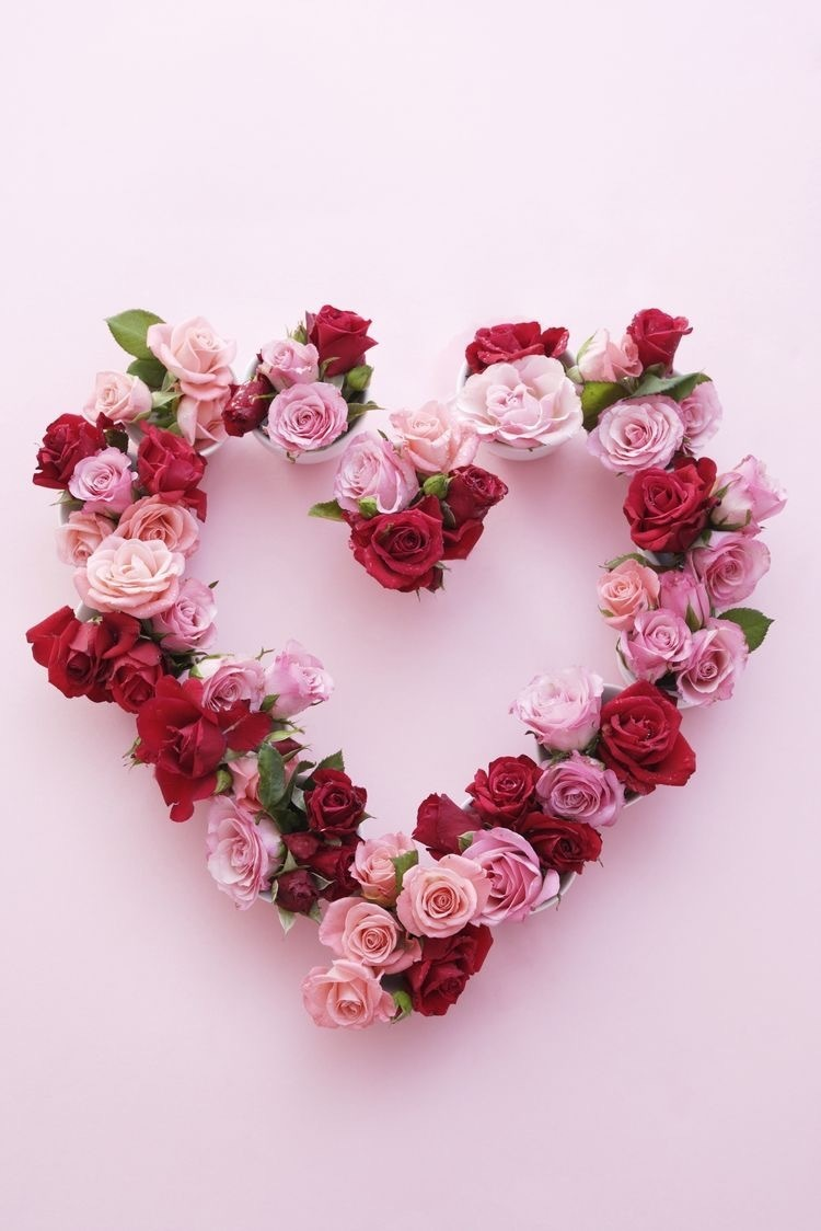 flowers, love, and heart image
