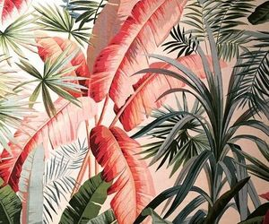 pink palm leaves image