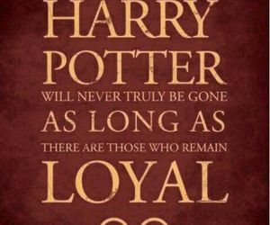 harry potter, loyal, and hp image
