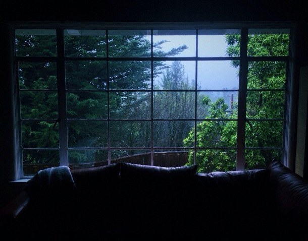 window, nature, and dark image