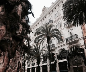 architecture, travel, and palms image