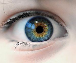 eyes, throne of glass, and aelin image