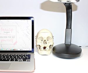 anatomy, apple, and beauty image