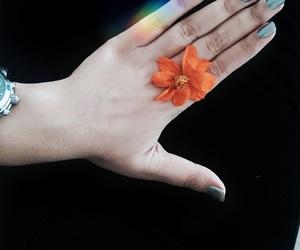 baby, orange, and perfect image