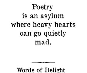 heart, mad, and poetry image