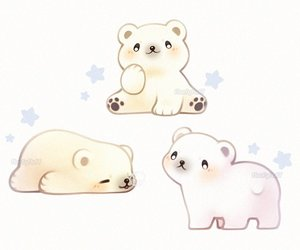 Polar Bear and cute image