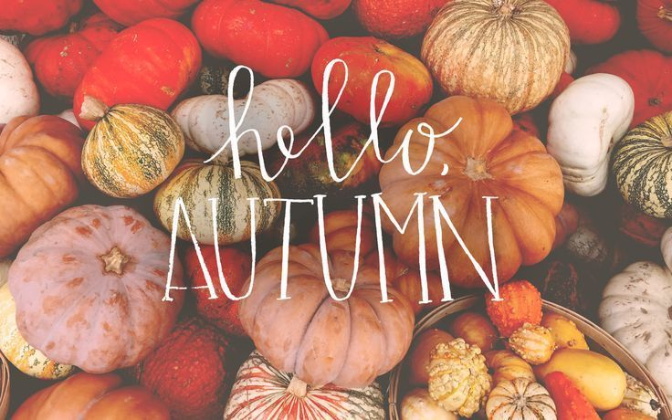 autumn, fall, and article image
