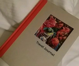 diary, girly, and travel image