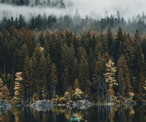 forest, boat, and nature image