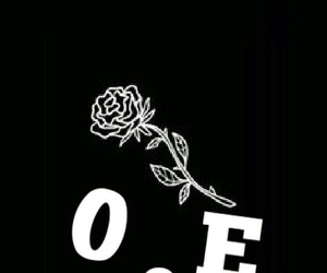 black, roses, and shawn image