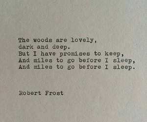 quote and robert frost image