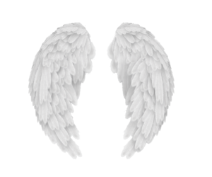 wings, angel, and feathers image