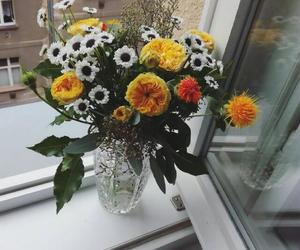 aesthetic, beautiful, and flower vase image