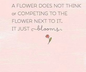quote and flowers image