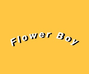 album, background, and flower boy image