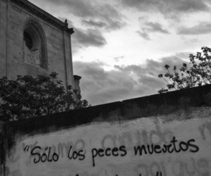 fishes and accion poetica image