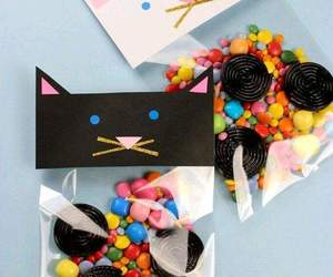 cat and candy image