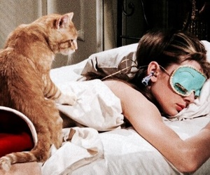 audrey, breakfast, and cat image