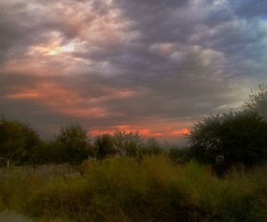 autumn, morning, and darksky image