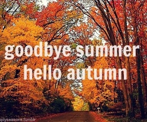 autumn, hello, and summer image