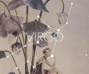 virgo, flowers, and zodiac image